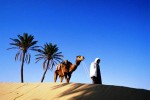 Путешествие в Тунис: несколько причин для отдыха